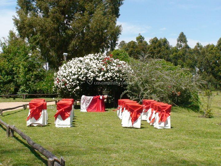 Ceremonia en primavera