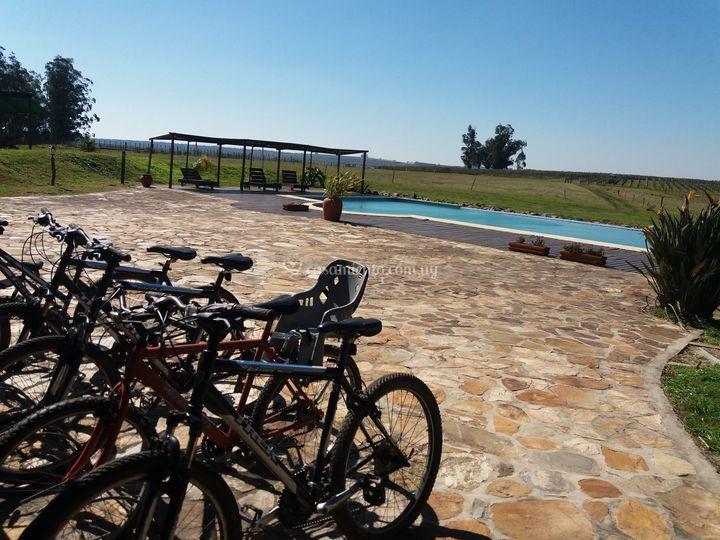 Terraza piscina bicicletas