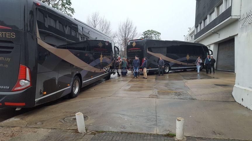Mas buses