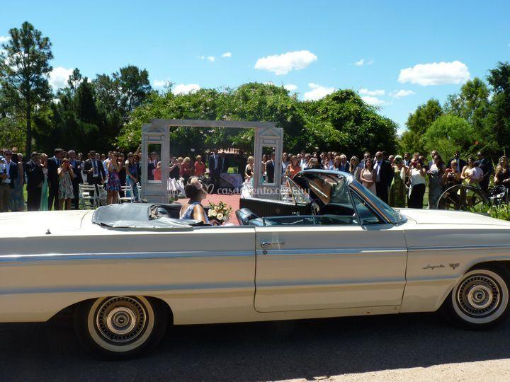El mejor impala!