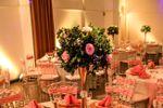 Fiesta rosa y dorado