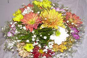 Florería Las Strelitzias