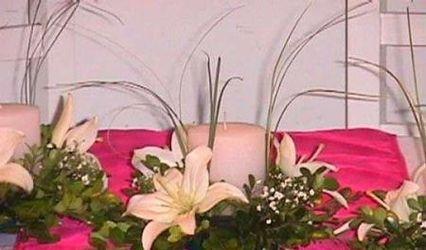 Florería La Primavera