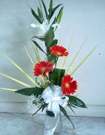 Variadas flores