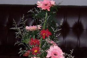 Stefa Flores Florería