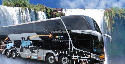 Buses para traslado