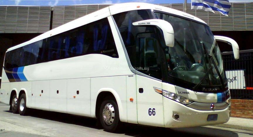 Ómnibus 44 pasajeros