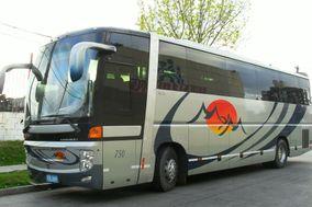 MyM Viajes