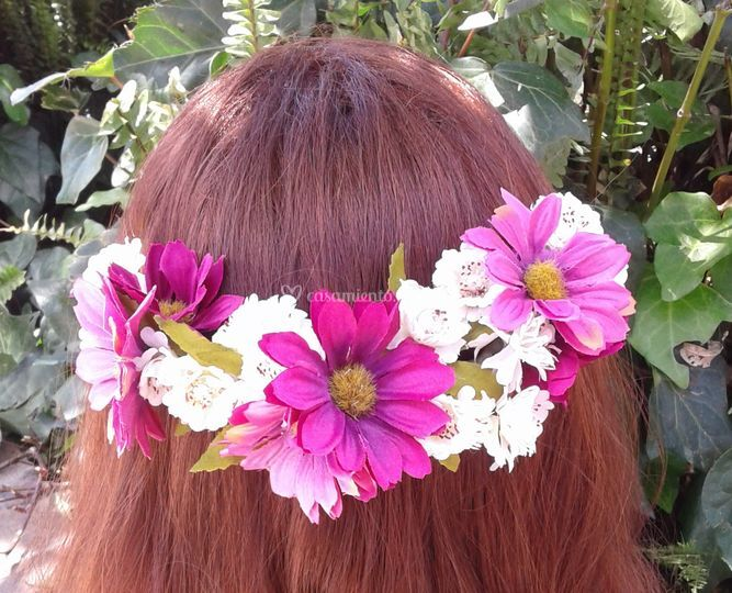 Semicorona flor