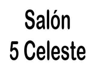 Salón 5 Celeste logo