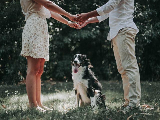 10 formas de pedir casamiento ¡y que sea inolvidable!